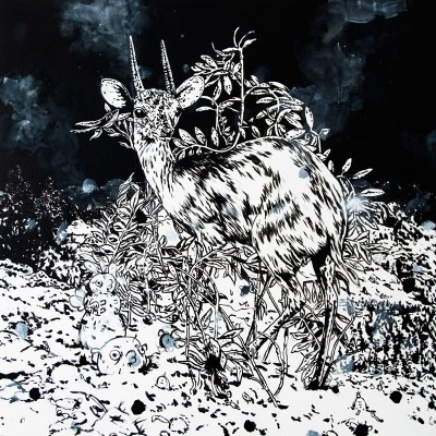 Untitled (Suni, 2012)