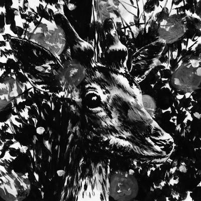 Untitled (b/w-study 22, 2012)